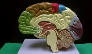 mindfulness, meditation, stress & mindfulness, reducing stress, stress reduction, stress, stress reducers